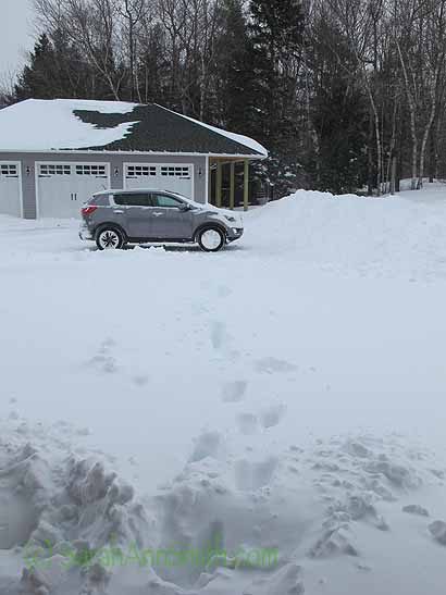 About 11 a.m. this morning.  Notice the plow pile that is taller than the car and about 35 feet wide?