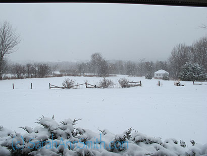 In the beginning, there was an inch of snow over the previously bare ground.  This was taken on Friday morning.