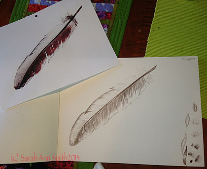 I think I'm done.....photo of feather from Val upper left, my sketch on right