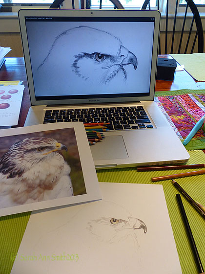 Starting out with the eye and beak, doing an underpainting/sketch.