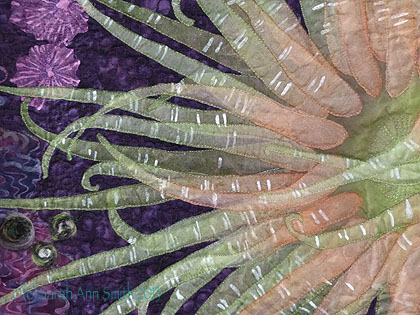 Detail, Moonglow Anemone 2 by Carla Stehr