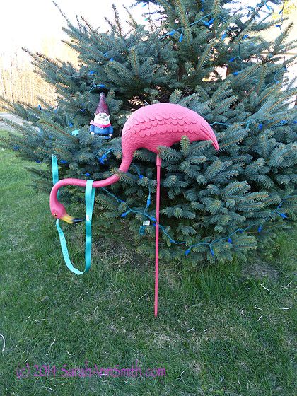 The gnome and Flamingo in their first perch