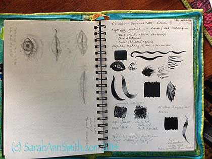 Epsilon 7 x 10 sketchbook, pencil on left page.  Charcoal and water on right page with white charcoal pencil.  Exercises from an online class with Val Webb.