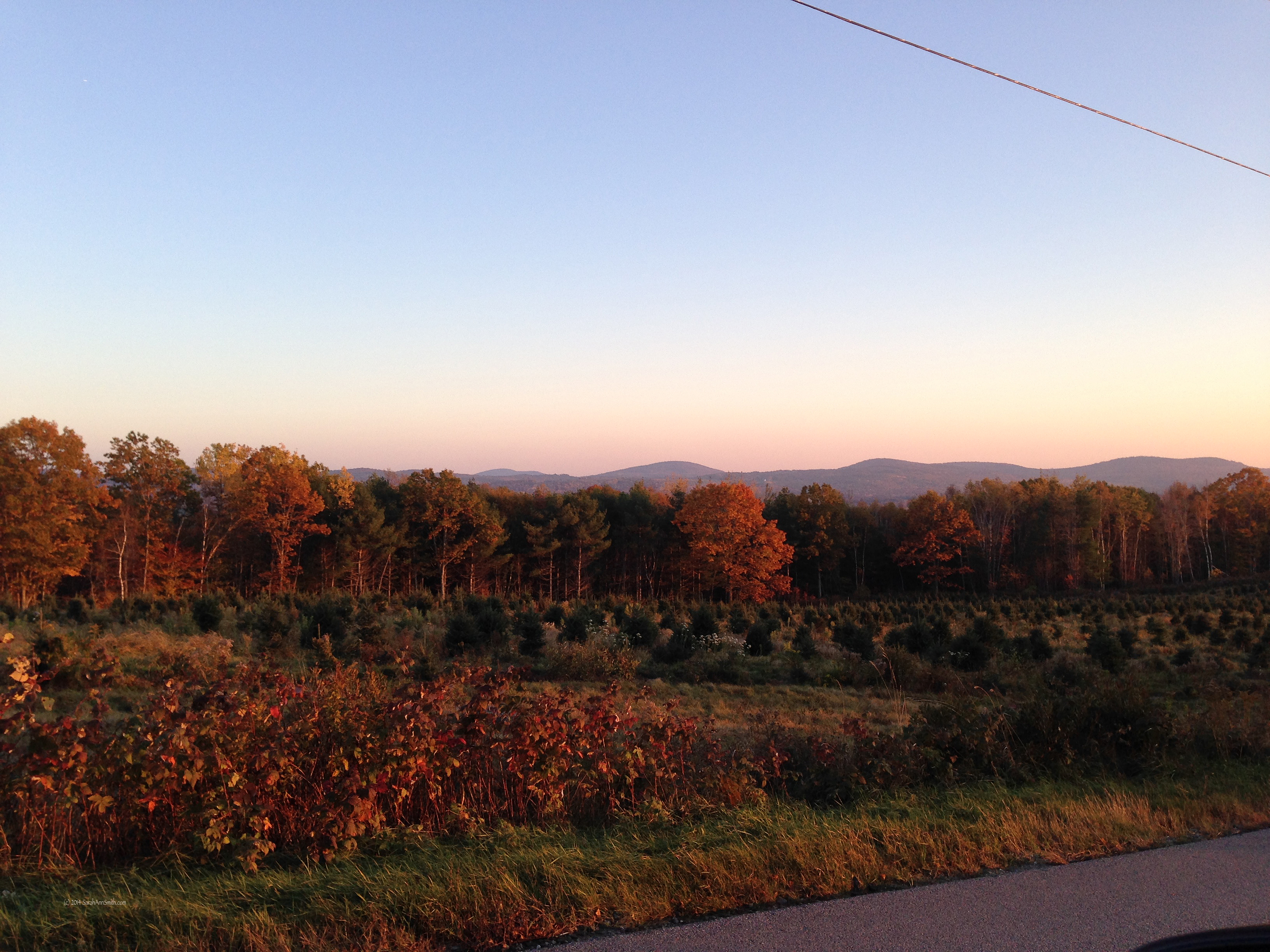 Looking west from Appleton Ridge Road at sunset.  Photo (c) Sarah Ann Smith