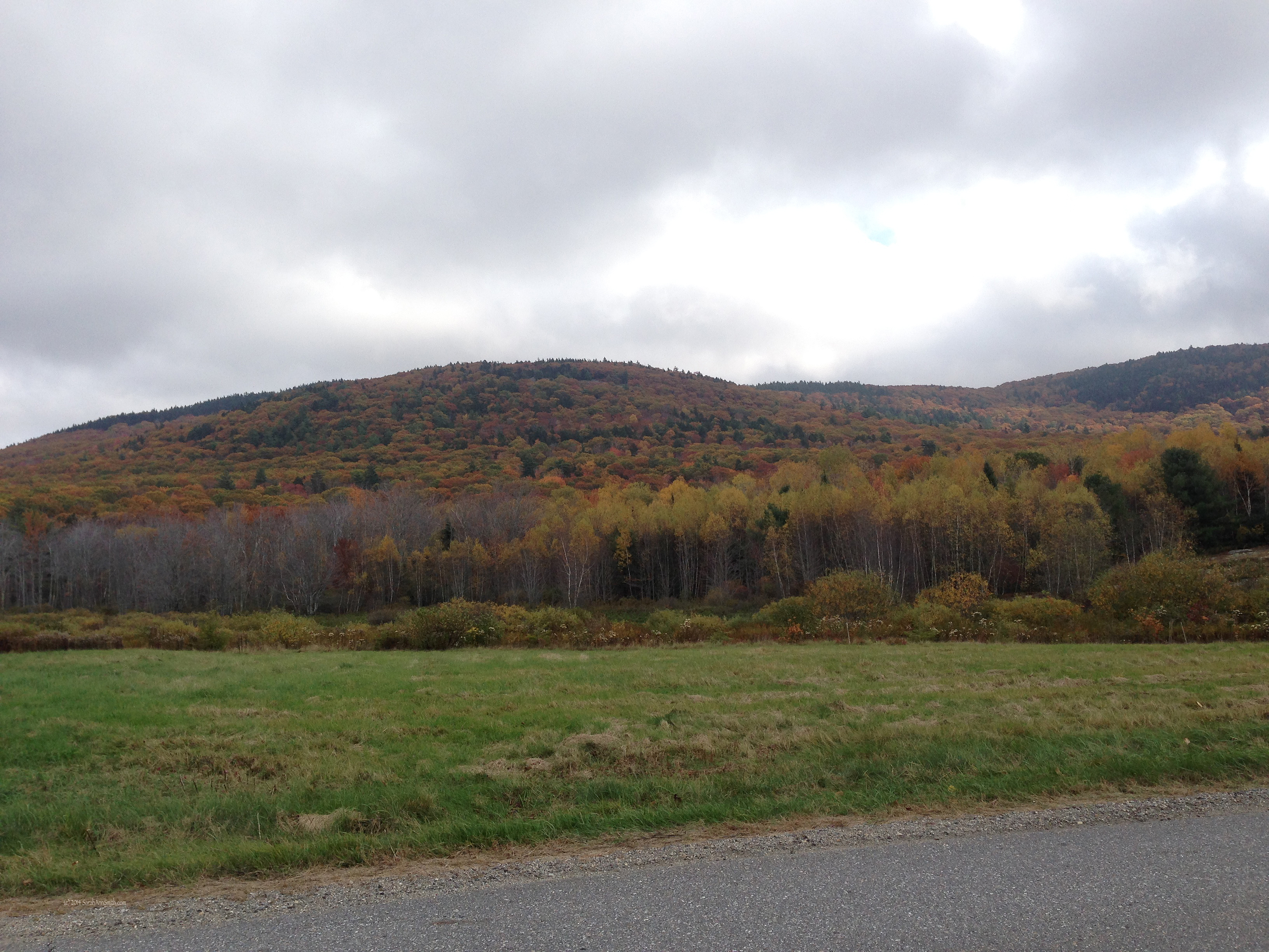 From Gillette Road in south Hope, Maine. Photo (c) Sarah Ann Smith