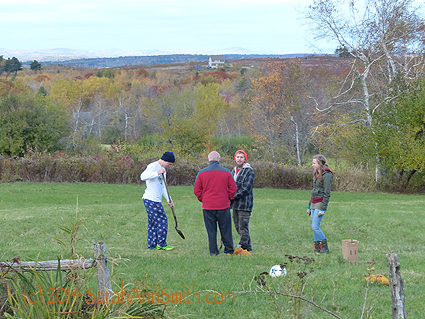 """Planting daffodil bulbs on our """"meadow"""" (i.e. a place we don't mow).  I told Eli, Paul, Joshua and Ashley they looked like a road crew:  standing around looking at a hole, holding tools, one maybe working...."""
