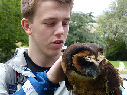 Petting the owl.  SO soft!