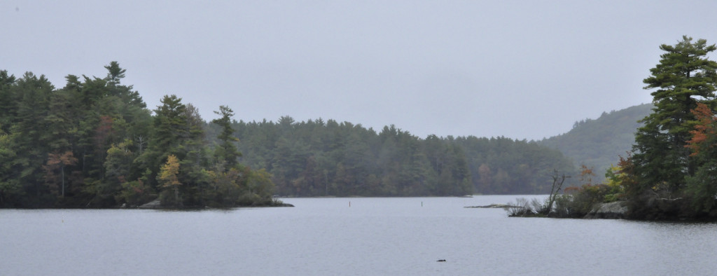 A misty, hazy, rainy morning at the boat launch on Megunticook Lake on Route 105 (on the way home from town).  Yes, I get to live in this gloriously beautiful place!  Smart sharpen and crop, but not much else.