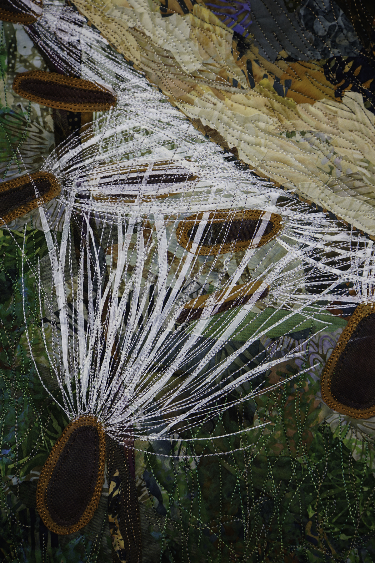 Milkweed pod, seeds and silks detail